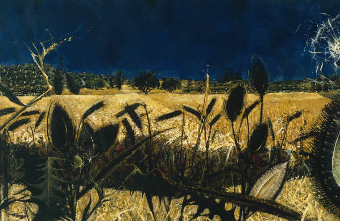 Alan Reynolds Summer Young Septembers Cornfield 1954