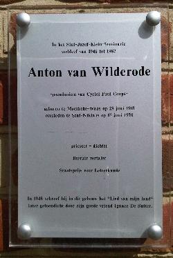 Wilderode-Angelico
