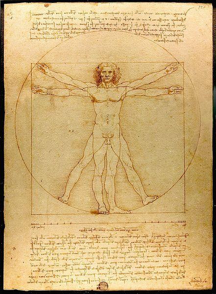 Leonardo Da Vinci Vitruve man