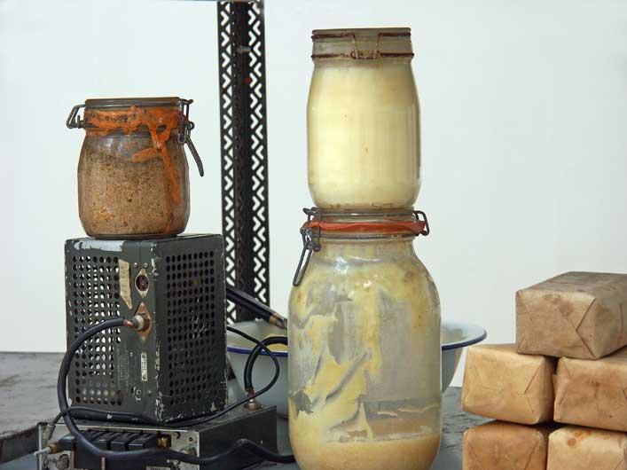 Spiering-Beuys