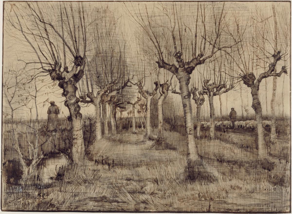 Vincent van Gogh Knotberken