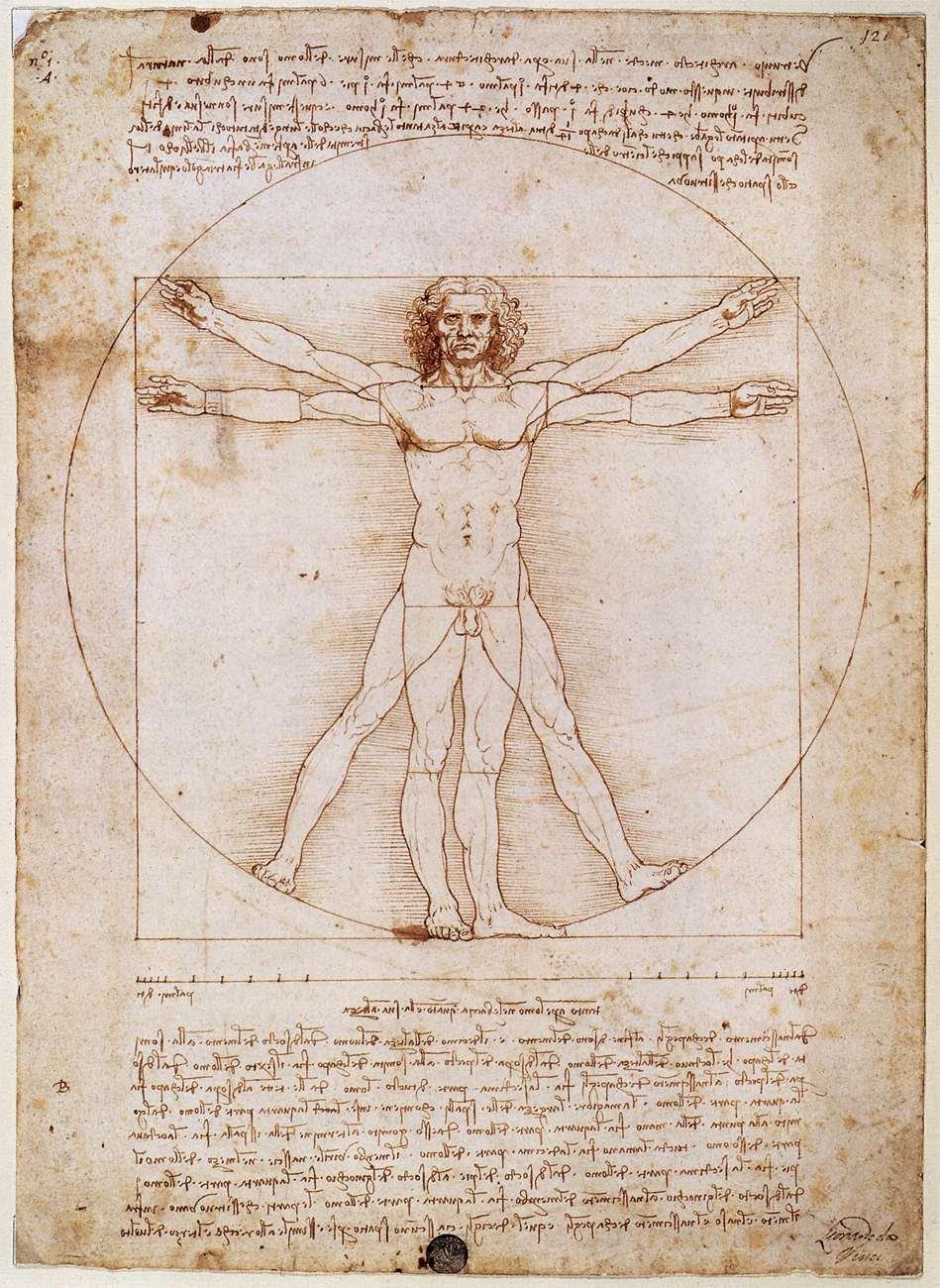 Kopland-Vinci