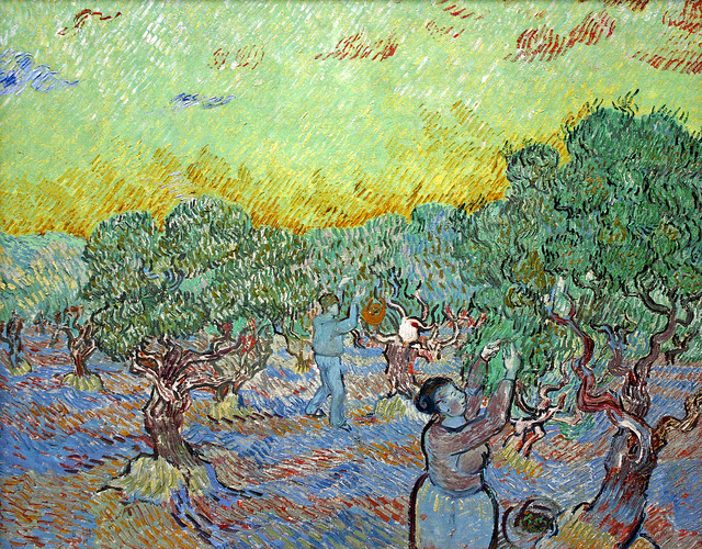 Vincent van Gogh Olijfgaard met plukkers