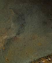 Leeflang-Rembrandt