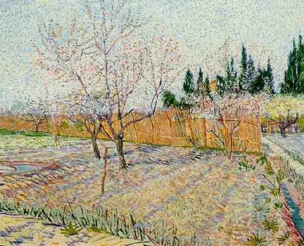 Vinkenoog-Gogh
