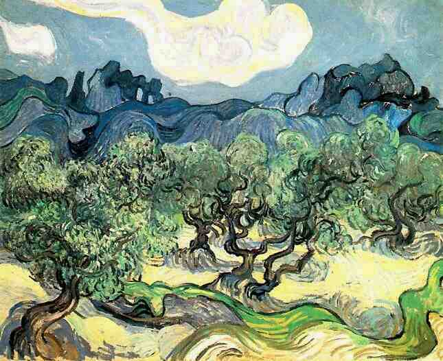 Vincent van Gogh olijfbomen